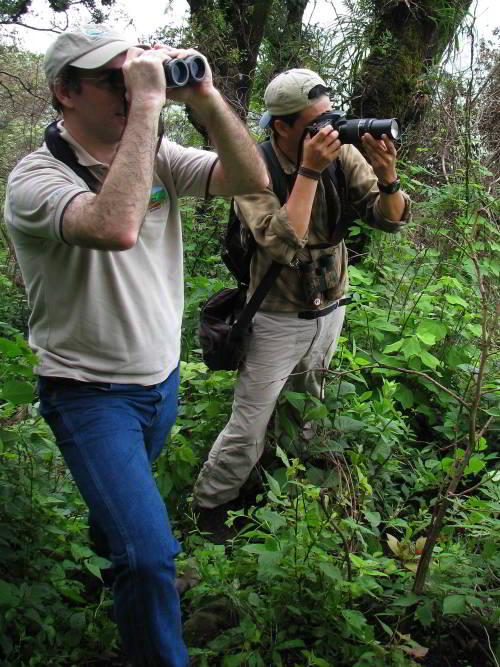 Cuyabeno Fauna Reserve Ecuador: Birdwatchers on Amazon Expedition in Ecuador
