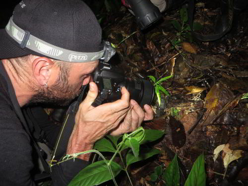 RUNDREISE REGENWALD ECUADOR : Jungle photography at Cuyabeno Amazon Jungle Lodge, Ecuador visit
