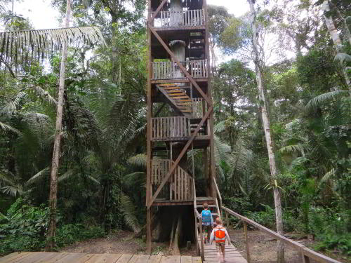 BEST BEST ECUADOR TRAVEL [CUYABENO TOURS]: The Cuyabeno Canopy Tower.