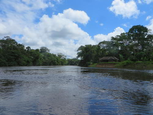 Cuyabeno Fauna Reserve Ecuador: The mouth of the Cuyabeno River.