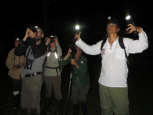 TURISMO ORIENTE DEL ECUADOR: on a night excursion in Cuyabeno.